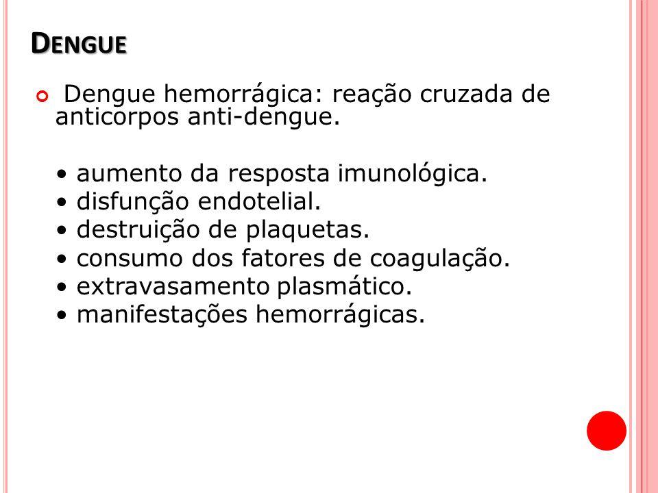 D ENGUE Dengue hemorrágica: reação cruzada de anticorpos anti-dengue. aumento da resposta imunológica. disfunção endotelial. destruição de plaquetas.