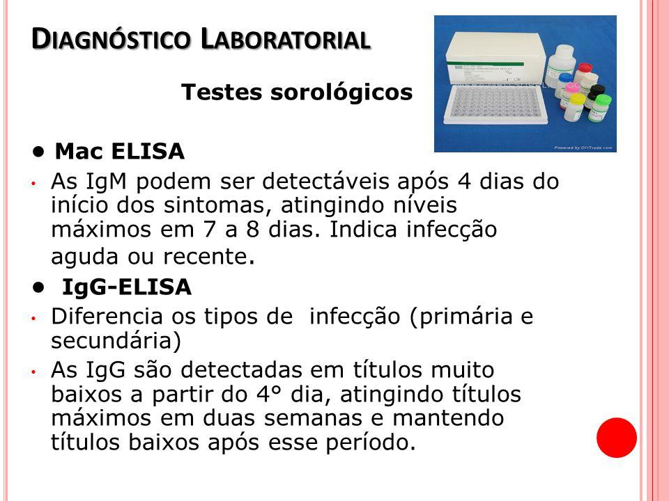 D IAGNÓSTICO L ABORATORIAL Testes sorológicos Mac ELISA As IgM podem ser detectáveis após 4 dias do início dos sintomas, atingindo níveis máximos em 7