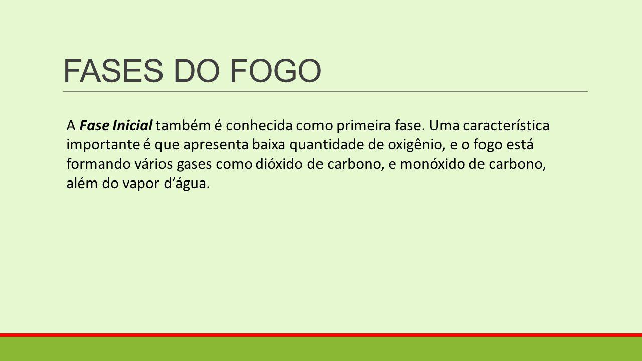 FASES DO FOGO A Fase Inicial também é conhecida como primeira fase. Uma característica importante é que apresenta baixa quantidade de oxigênio, e o fo