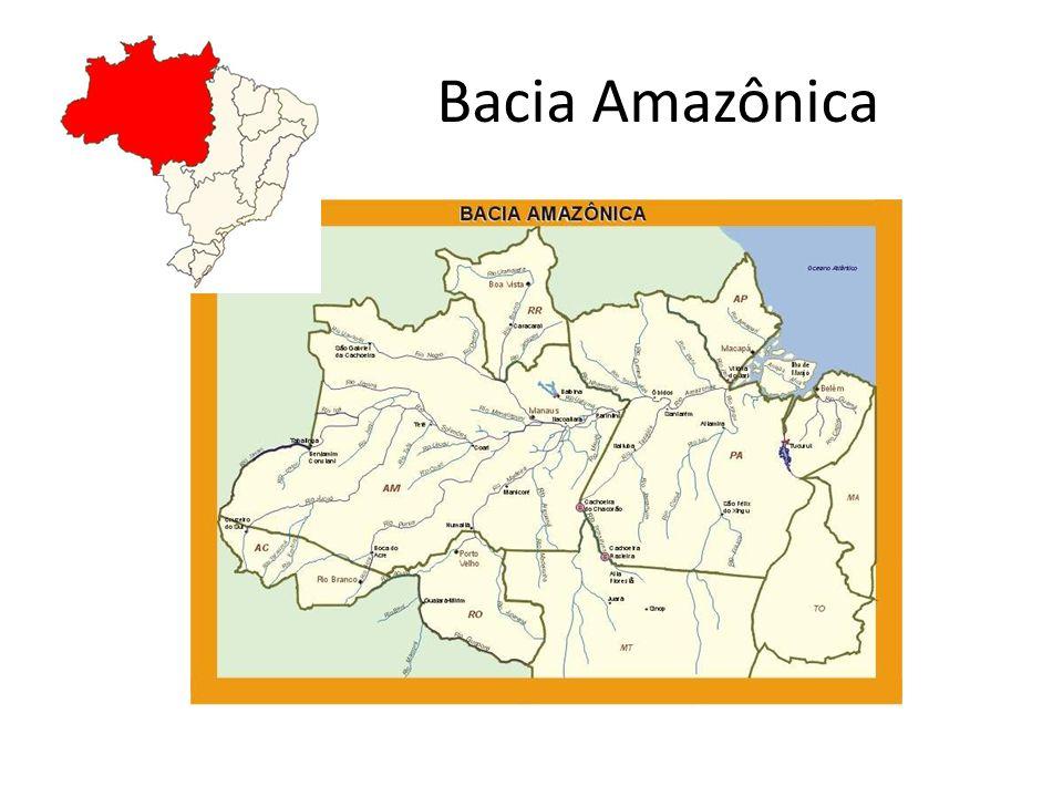 É a maior bacia hidrográfica do mundo com cerca de 6,1 milhões de Km 2, sendo 3,9 milhões de Km 2 presentes no território brasileiro; Detém 74% dos recursos hídricos superficiais do país; Os afluentes do Amazonas são alimentados pelas chuvas provenientes tanto do hemisfério Norte como do hemisfério Sul; suas águas originam-se principalmente das águas das chuvas, e outra parte do degelo dos Andes, possuindo um regime misto; O rio Amazonas é o maior do mundo em extensão e em volume de água; Percorre áreas planas (rio de planície) e de baixa altitude, favorecendo a navegação fluvial como meio de transporte;