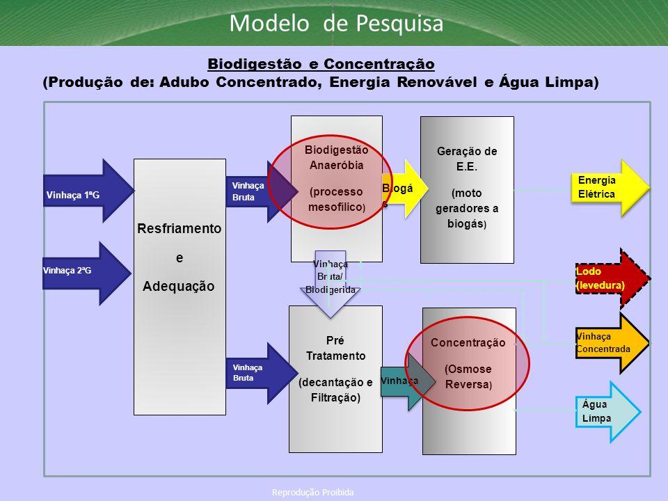 Reprodução Proibida Modelo de Pesquisa Biodigestão e Concentração (Produção de: Adubo Concentrado, Energia Renovável e Água Limpa) Biodigestão Anaerób