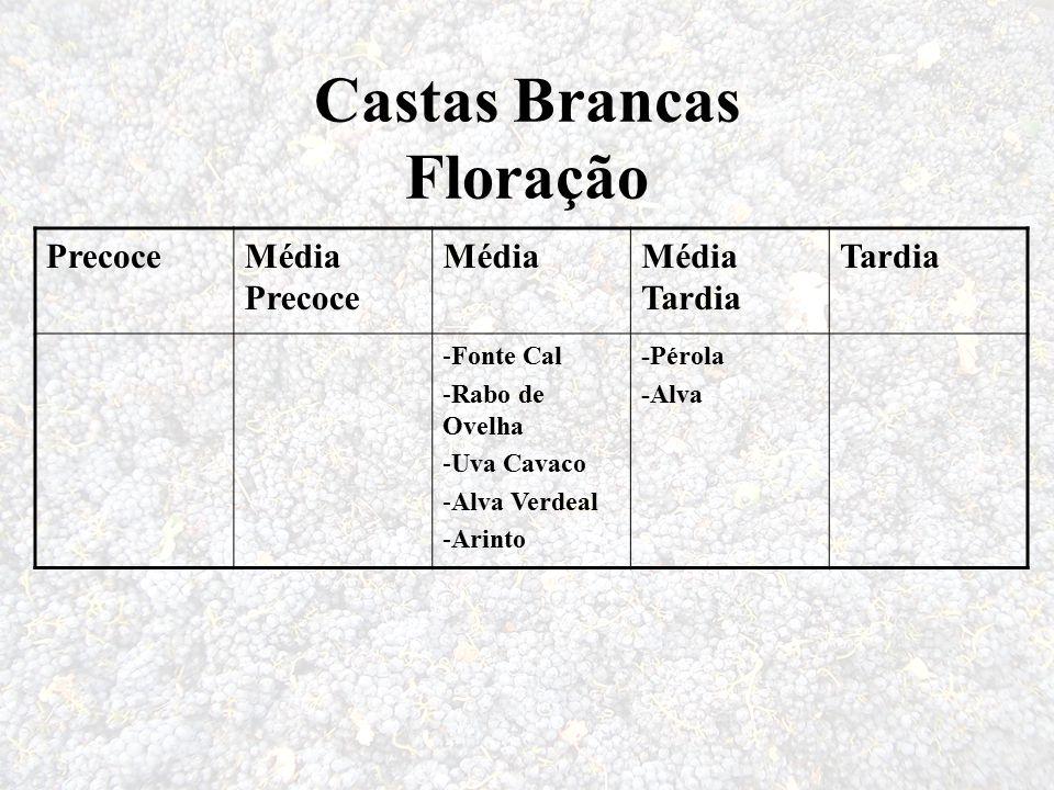 Castas Brancas Floração PrecoceMédia Precoce MédiaMédia Tardia Tardia -Fonte Cal -Rabo de Ovelha -Uva Cavaco -Alva Verdeal -Arinto -Pérola -Alva