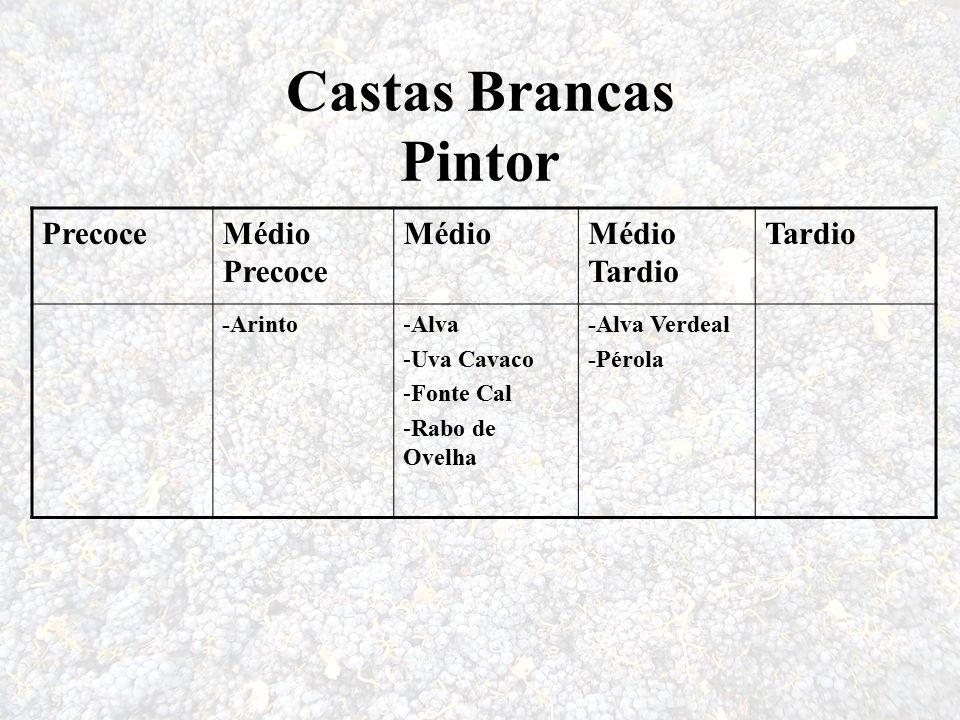 Castas Brancas Pintor PrecoceMédio Precoce MédioMédio Tardio Tardio -Arinto-Alva -Uva Cavaco -Fonte Cal -Rabo de Ovelha -Alva Verdeal -Pérola
