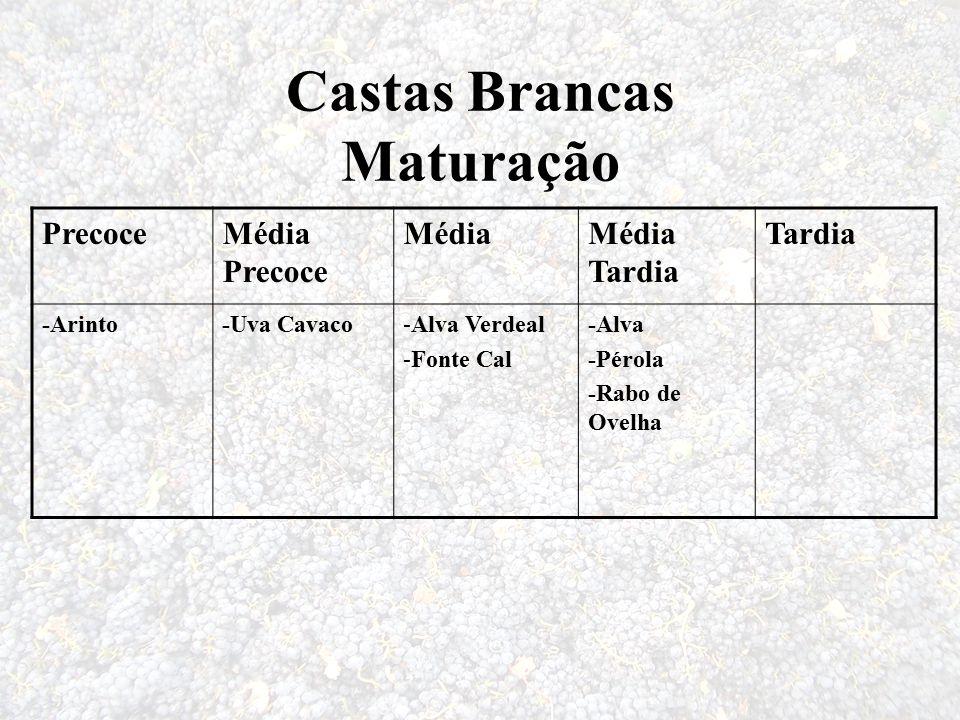 Castas Brancas Maturação PrecoceMédia Precoce MédiaMédia Tardia Tardia -Arinto-Uva Cavaco-Alva Verdeal -Fonte Cal -Alva -Pérola -Rabo de Ovelha