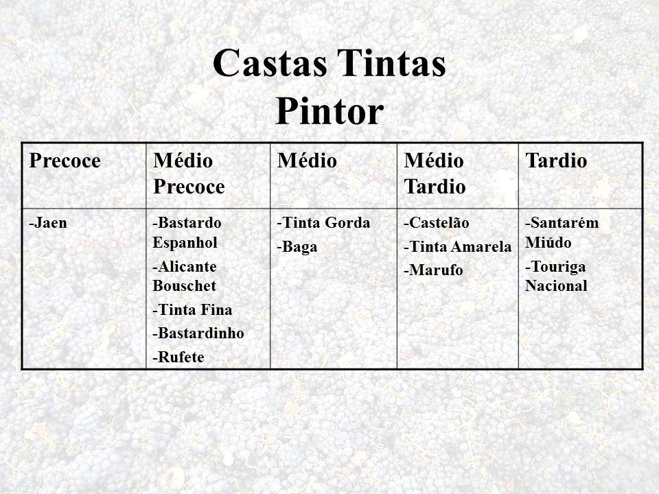 Castas Tintas Pintor PrecoceMédio Precoce MédioMédio Tardio Tardio -Jaen-Bastardo Espanhol -Alicante Bouschet -Tinta Fina -Bastardinho -Rufete -Tinta