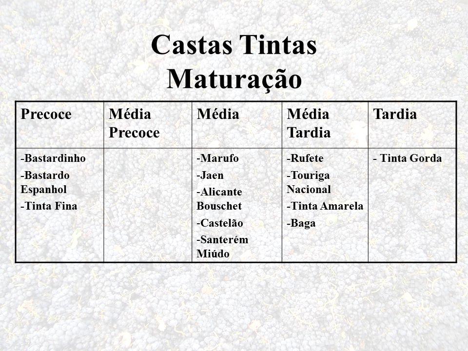Castas Tintas Maturação PrecoceMédia Precoce MédiaMédia Tardia Tardia -Bastardinho -Bastardo Espanhol -Tinta Fina -Marufo -Jaen -Alicante Bouschet -Ca