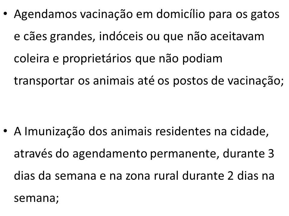 Agendamos vacinação em domicílio para os gatos e cães grandes, indóceis ou que não aceitavam coleira e proprietários que não podiam transportar os ani