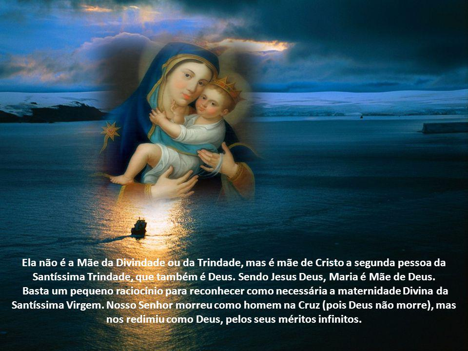 Apliquemos, agora, estas noções de bom senso ao caso da Maternidade divina de Nossa Senhora. Há em Nosso Senhor Jesus Cristo duas naturezas: a humana