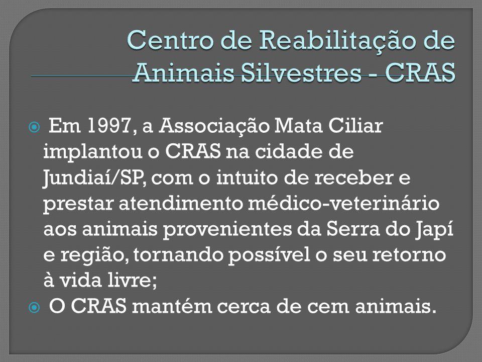  Em 1997, a Associação Mata Ciliar implantou o CRAS na cidade de Jundiaí/SP, com o intuito de receber e prestar atendimento médico-veterinário aos animais provenientes da Serra do Japí e região, tornando possível o seu retorno à vida livre;  O CRAS mantém cerca de cem animais.