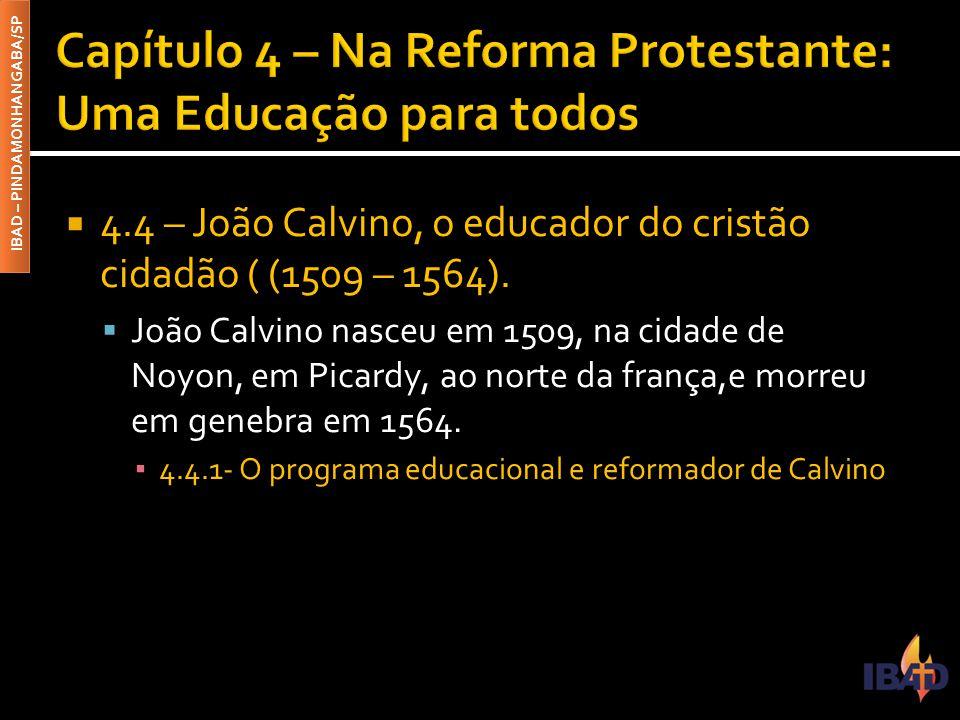 IBAD – PINDAMONHANGABA/SP  4.4 – João Calvino, o educador do cristão cidadão ( (1509 – 1564).  João Calvino nasceu em 1509, na cidade de Noyon, em P
