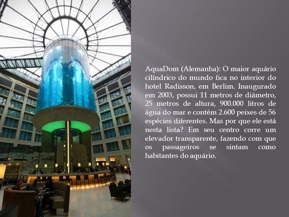 AquaDom (Alemanha): O maior aquário cilíndrico do mundo fica no interior do hotel Radisson, em Berlim. Inaugurado em 2003, possui 11 metros de diâmetr