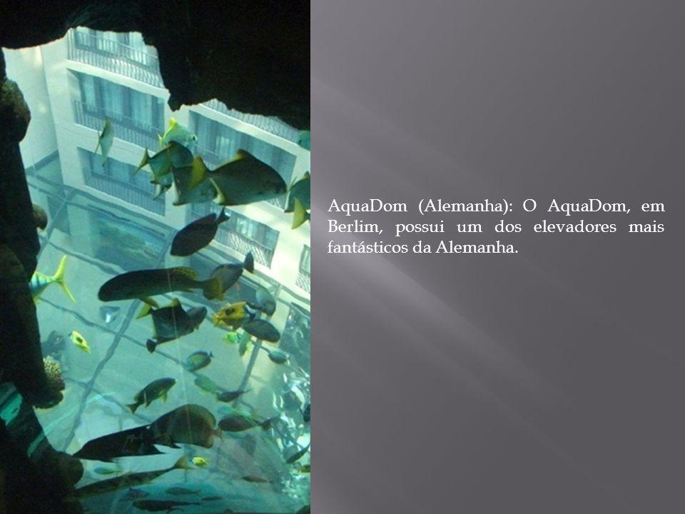 AquaDom (Alemanha): O AquaDom, em Berlim, possui um dos elevadores mais fantásticos da Alemanha.