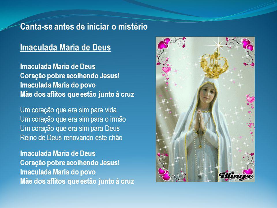 Canta-se antes de iniciar o mistério Imaculada Maria de Deus Imaculada Maria de Deus Coração pobre acolhendo Jesus! Imaculada Maria do povo Mãe dos af