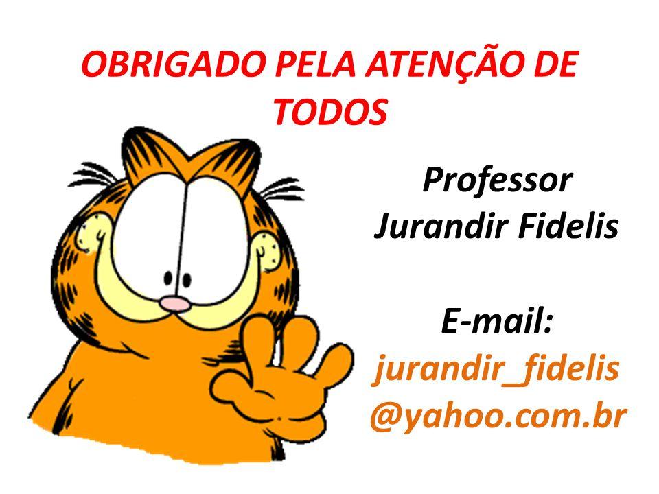OBRIGADO PELA ATENÇÃO DE TODOS Professor Jurandir Fidelis E-mail: jurandir_fidelis @yahoo.com.br