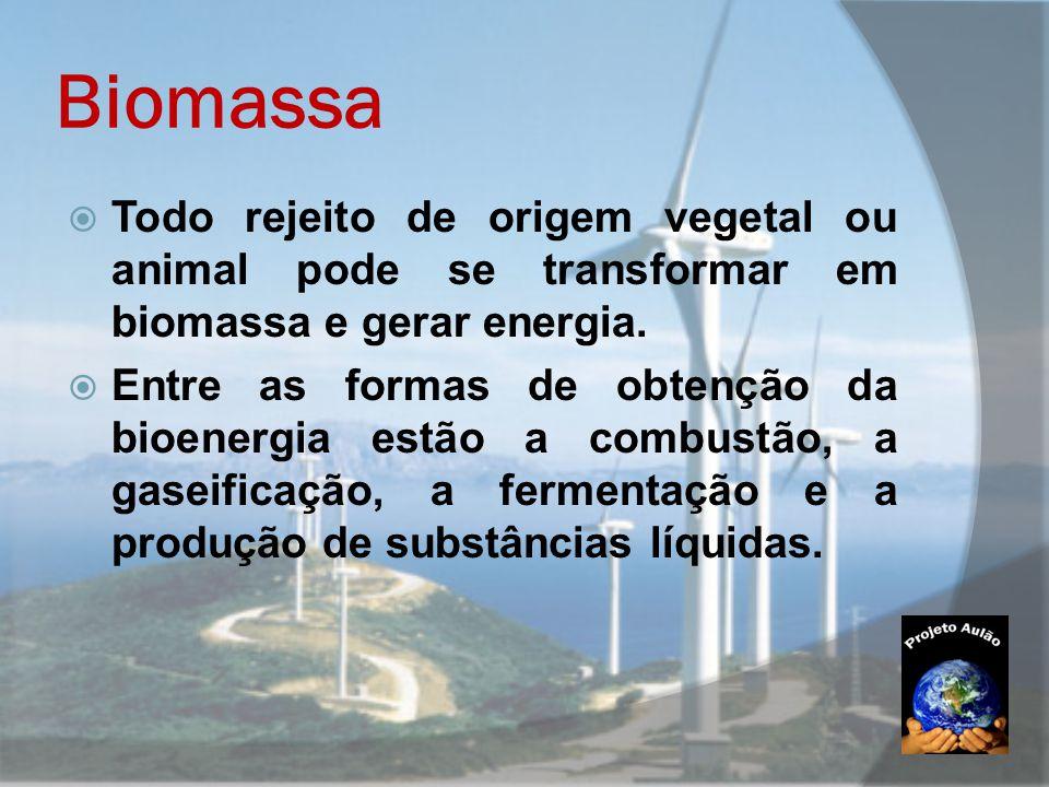 Biomassa  Todo rejeito de origem vegetal ou animal pode se transformar em biomassa e gerar energia.  Entre as formas de obtenção da bioenergia estão