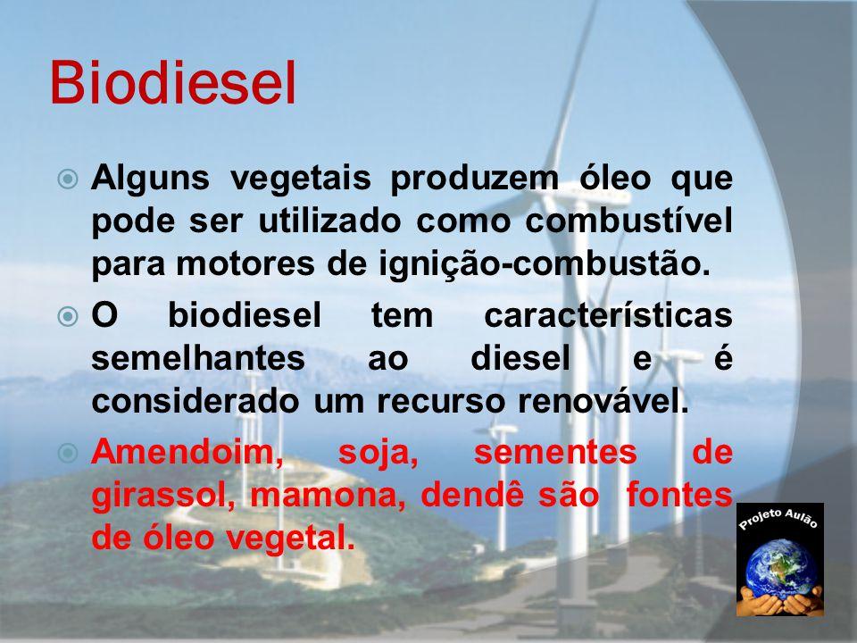 Biodiesel  Alguns vegetais produzem óleo que pode ser utilizado como combustível para motores de ignição-combustão.  O biodiesel tem características
