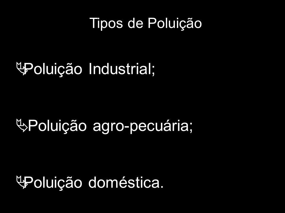 Tipos de Poluição  Poluição Industrial;  Poluição agro-pecuária;  Poluição doméstica.