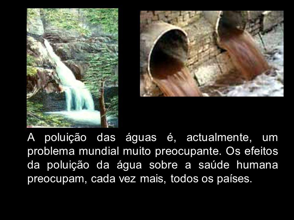 A poluição das águas é, actualmente, um problema mundial muito preocupante.