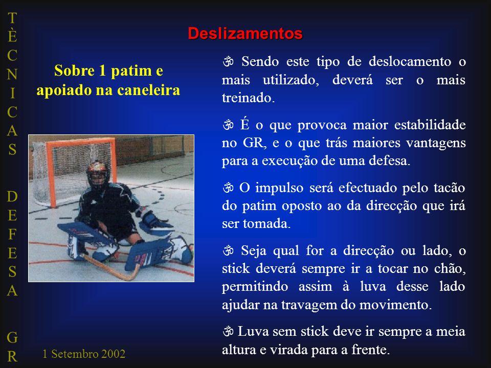 TÈCNICAS DEFESA GRTÈCNICAS DEFESA GR 1 Setembro 2002  Sendo este tipo de deslocamento o mais utilizado, deverá ser o mais treinado.  É o que provoca