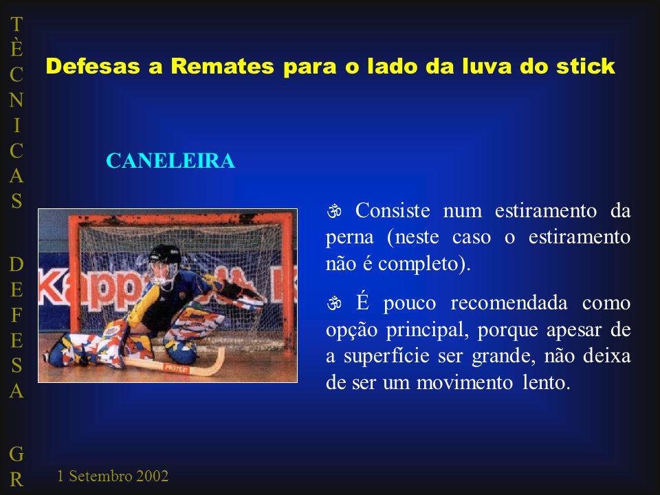 TÈCNICAS DEFESA GRTÈCNICAS DEFESA GR 1 Setembro 2002 Defesas a Remates para o lado da luva do stick CANELEIRA  Consiste num estiramento da perna (nes