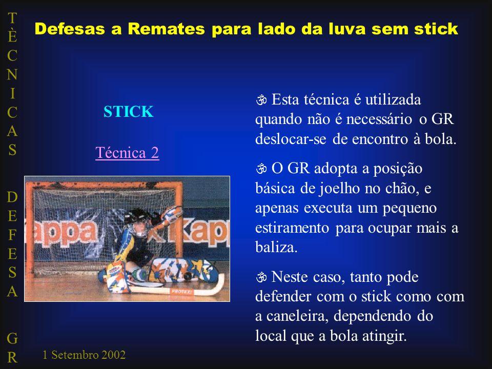 TÈCNICAS DEFESA GRTÈCNICAS DEFESA GR 1 Setembro 2002 Defesas a Remates para lado da luva sem stick STICK Técnica 2  Esta técnica é utilizada quando não é necessário o GR deslocar-se de encontro à bola.