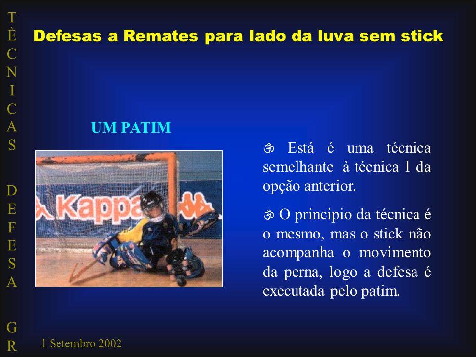 TÈCNICAS DEFESA GRTÈCNICAS DEFESA GR 1 Setembro 2002 Defesas a Remates para lado da luva sem stick UM PATIM  Está é uma técnica semelhante à técnica