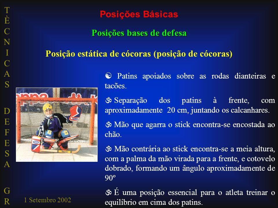 TÈCNICAS DEFESA GRTÈCNICAS DEFESA GR 1 Setembro 2002  Patins apoiados sobre as rodas dianteiras e tacões. \ Separação dos patins à frente, com aproxi