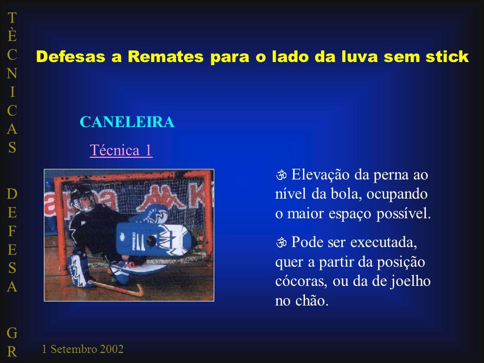 TÈCNICAS DEFESA GRTÈCNICAS DEFESA GR 1 Setembro 2002 CANELEIRA Técnica 1  Elevação da perna ao nível da bola, ocupando o maior espaço possível.  Pod