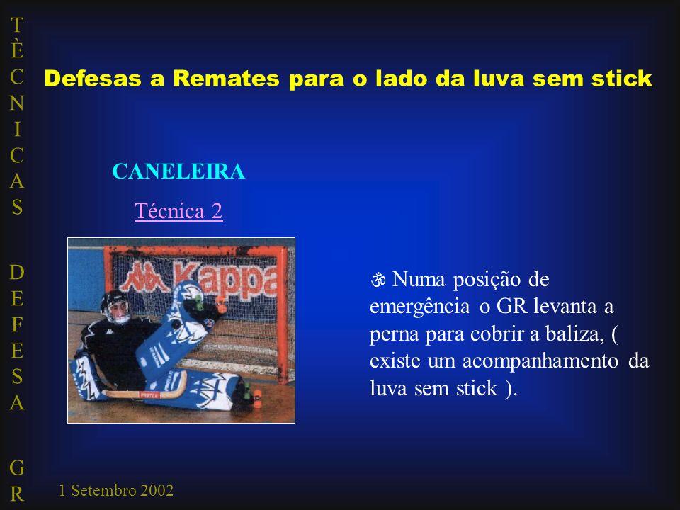 TÈCNICAS DEFESA GRTÈCNICAS DEFESA GR 1 Setembro 2002 Defesas a Remates para o lado da luva sem stick CANELEIRA Técnica 2  Numa posição de emergência