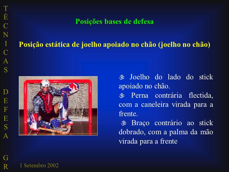 TÈCNICAS DEFESA GRTÈCNICAS DEFESA GR 1 Setembro 2002  Joelho do lado do stick apoiado no chão.  Perna contrária flectida, com a caneleira virada par