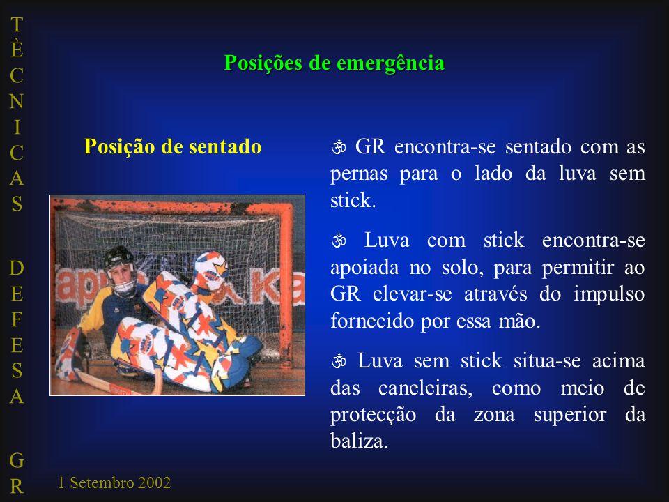 TÈCNICAS DEFESA GRTÈCNICAS DEFESA GR 1 Setembro 2002