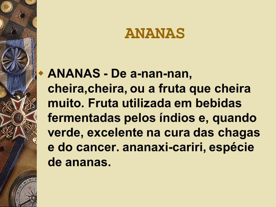 ANANAS  ANANAS - De a-nan-nan, cheira,cheira, ou a fruta que cheira muito. Fruta utilizada em bebidas fermentadas pelos índios e, quando verde, excel