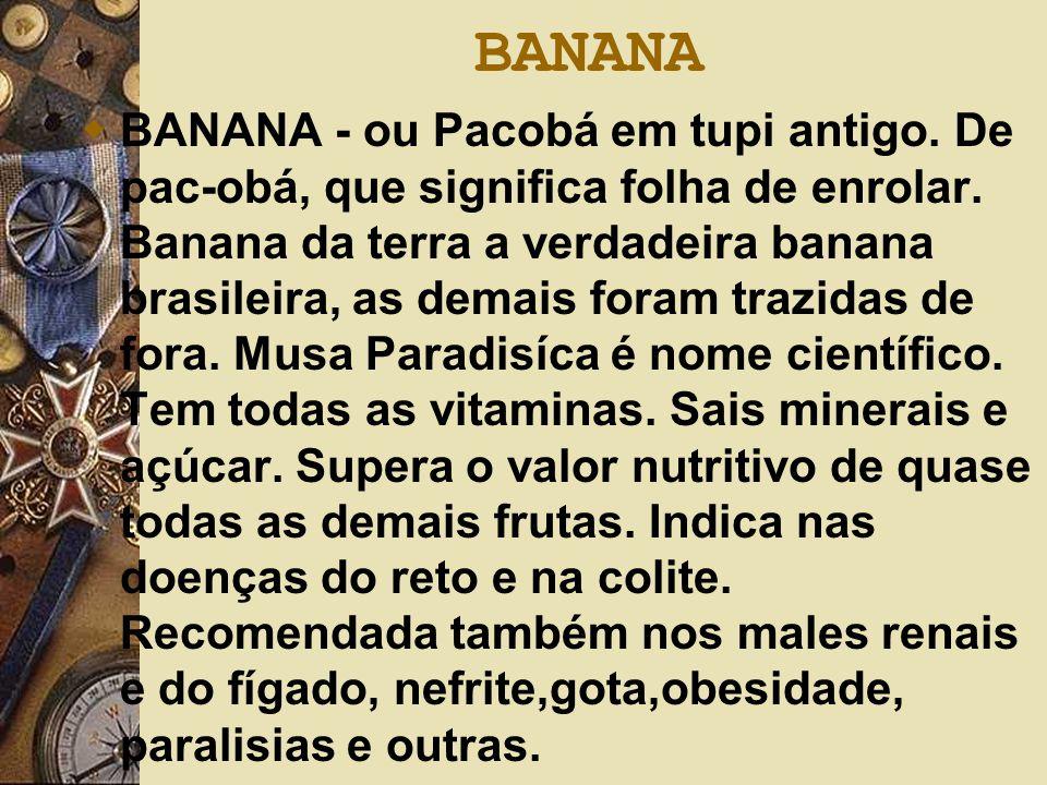 BANANA  BANANA - ou Pacobá em tupi antigo. De pac-obá, que significa folha de enrolar. Banana da terra a verdadeira banana brasileira, as demais fora