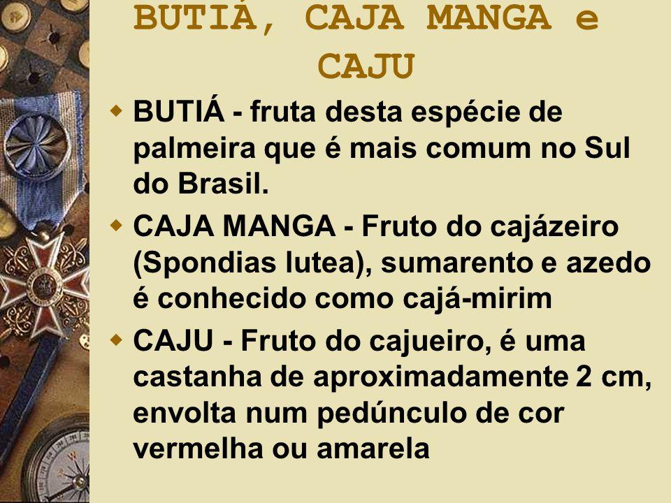 BUTIÁ, CAJA MANGA e CAJU  BUTIÁ - fruta desta espécie de palmeira que é mais comum no Sul do Brasil.  CAJA MANGA - Fruto do cajázeiro (Spondias lute