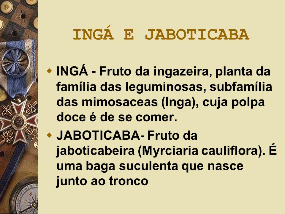 INGÁ E JABOTICABA  INGÁ - Fruto da ingazeira, planta da família das leguminosas, subfamília das mimosaceas (Inga), cuja polpa doce é de se comer.  J