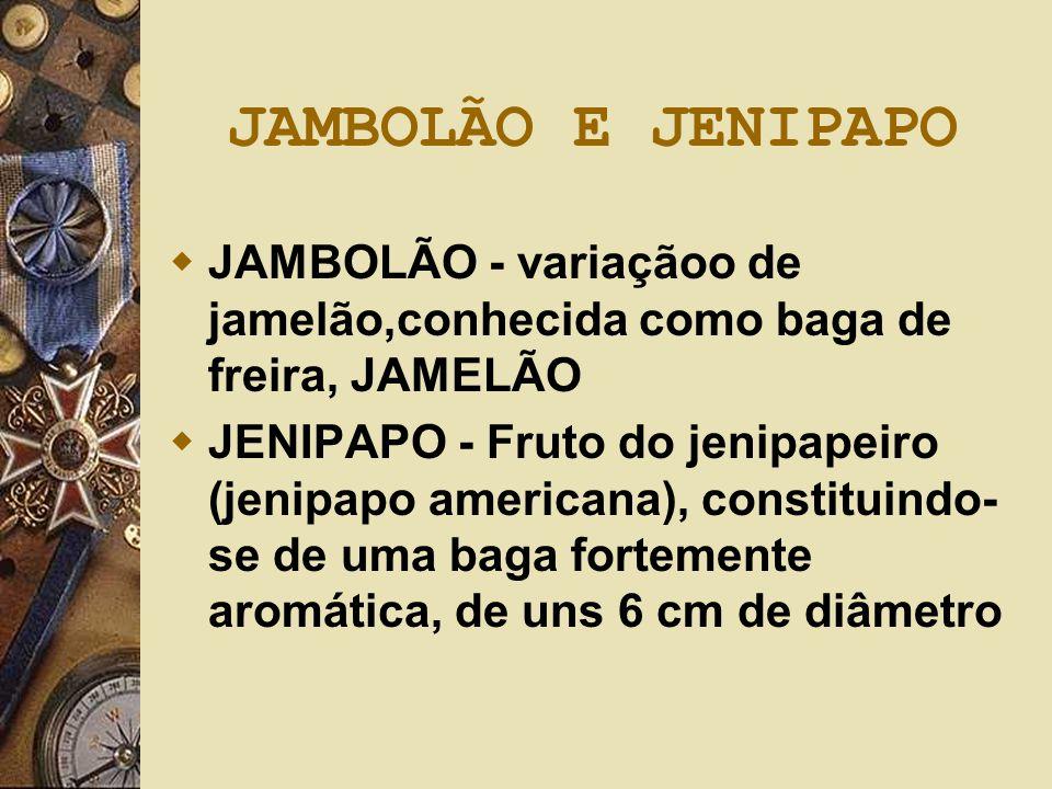 JAMBOLÃO E JENIPAPO  JAMBOLÃO - variaçãoo de jamelão,conhecida como baga de freira, JAMELÃO  JENIPAPO - Fruto do jenipapeiro (jenipapo americana), c