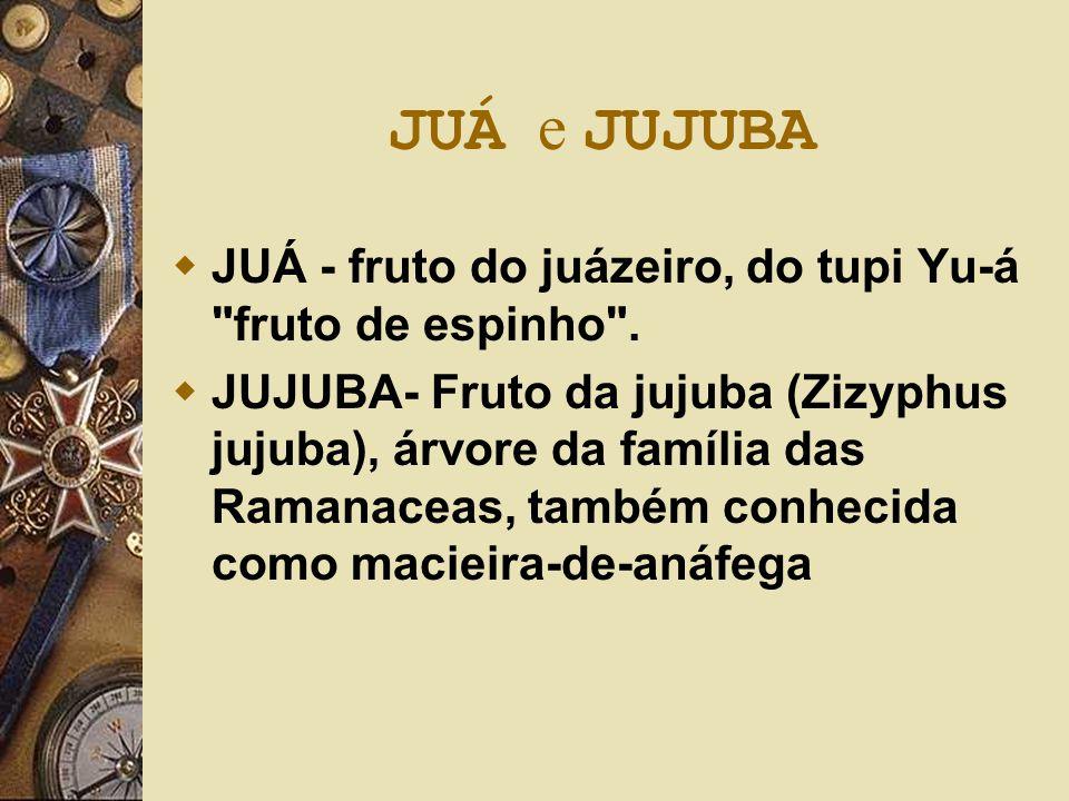 JUÁ e JUJUBA  JUÁ - fruto do juázeiro, do tupi Yu-á