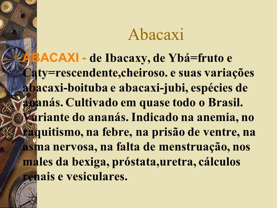 Abacaxi  ABACAXI - de Ibacaxy, de Ybá=fruto e Caty=rescendente,cheiroso. e suas variações abacaxi-boituba e abacaxi-jubi, espécies de ananás. Cultiva