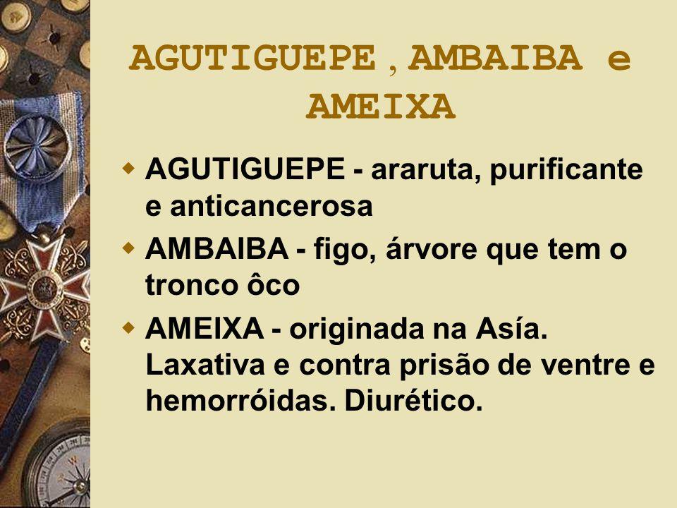 AGUTIGUEPE, AMBAIBA e AMEIXA  AGUTIGUEPE - araruta, purificante e anticancerosa  AMBAIBA - figo, árvore que tem o tronco ôco  AMEIXA - originada na
