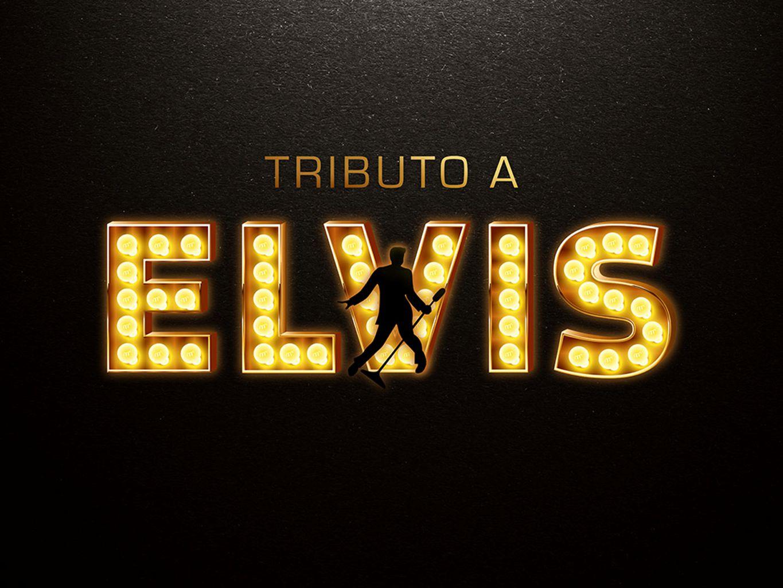 Nos dias atuais, Elvis é considerado como O REI por seus milhões de fãs espalhados por todo o mundo.