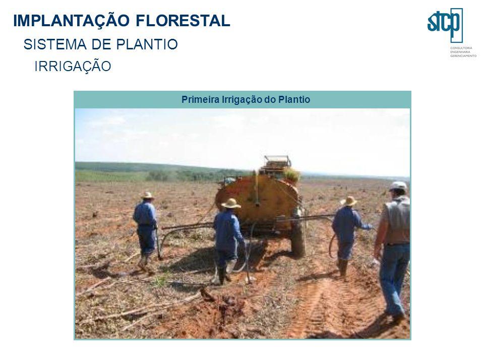 IMPLANTAÇÃO FLORESTAL SISTEMA DE PLANTIO IRRIGAÇÃO Primeira Irrigação do Plantio