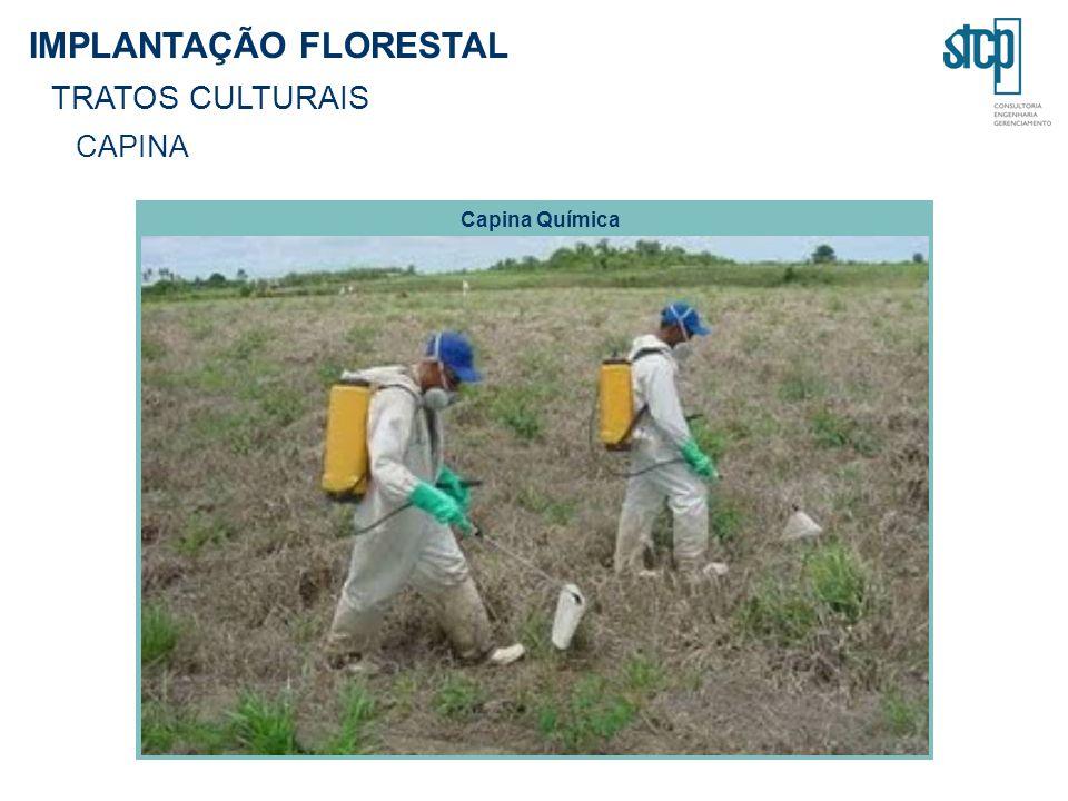 IMPLANTAÇÃO FLORESTAL TRATOS CULTURAIS CAPINA Capina Química