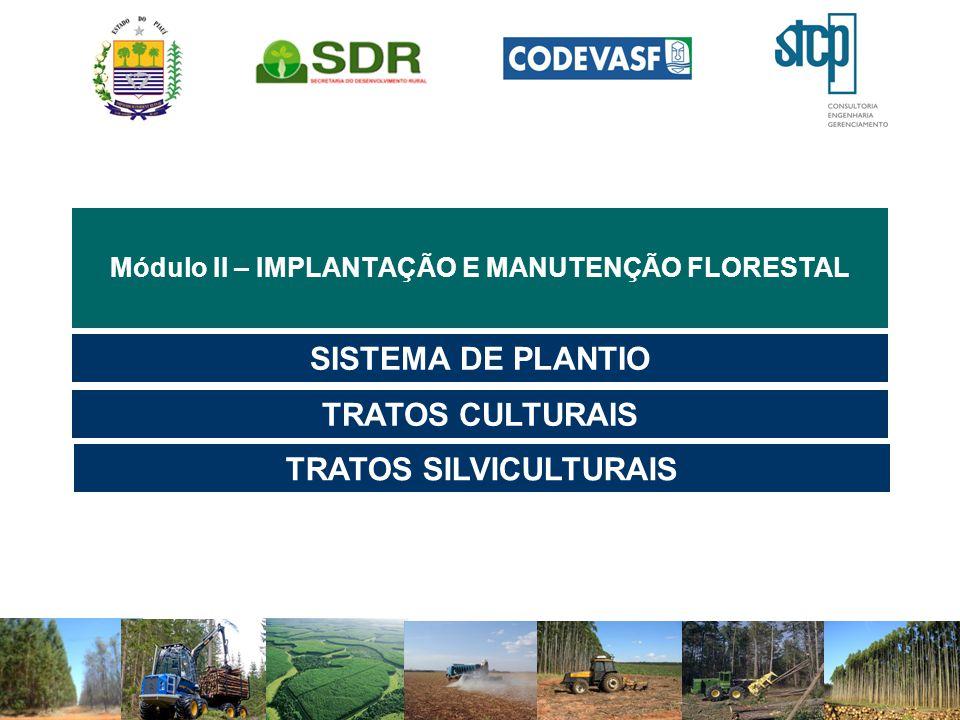 Módulo II – IMPLANTAÇÃO E MANUTENÇÃO FLORESTAL SISTEMA DE PLANTIO TRATOS CULTURAIS TRATOS SILVICULTURAIS