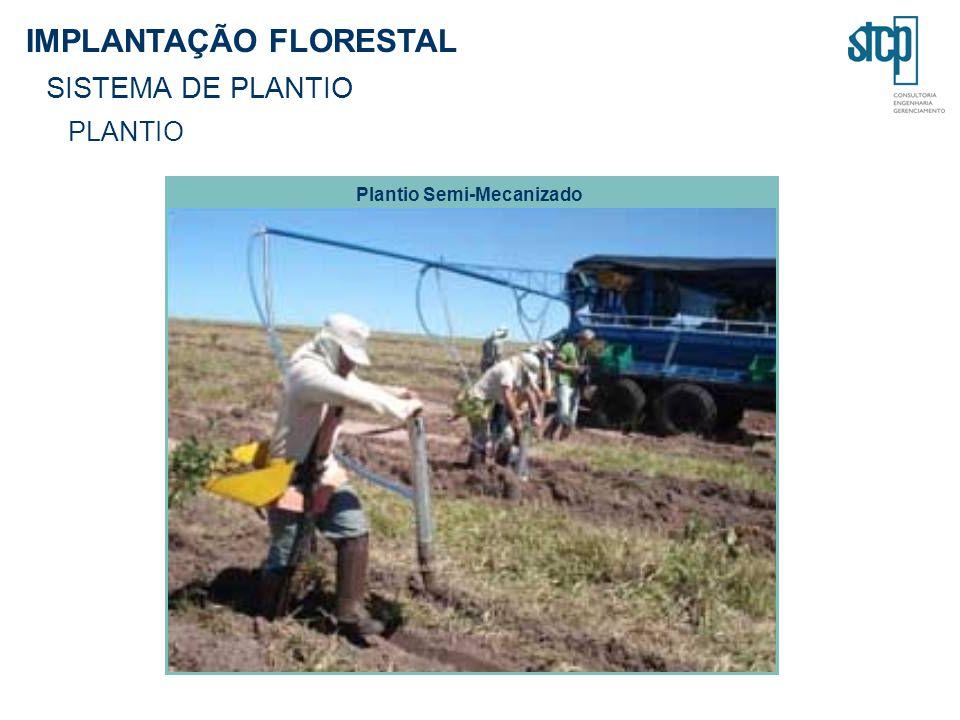IMPLANTAÇÃO FLORESTAL SISTEMA DE PLANTIO PLANTIO Plantio Semi-Mecanizado