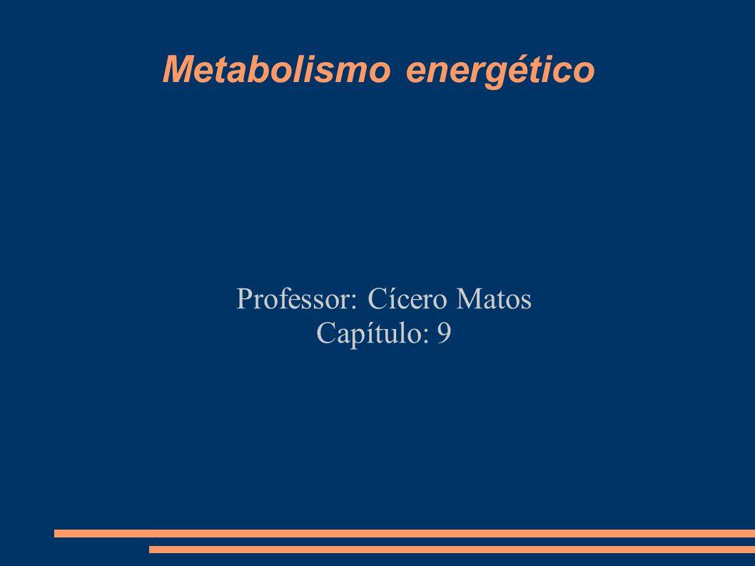 Metabolismo energético Professor: Cícero Matos Capítulo: 9