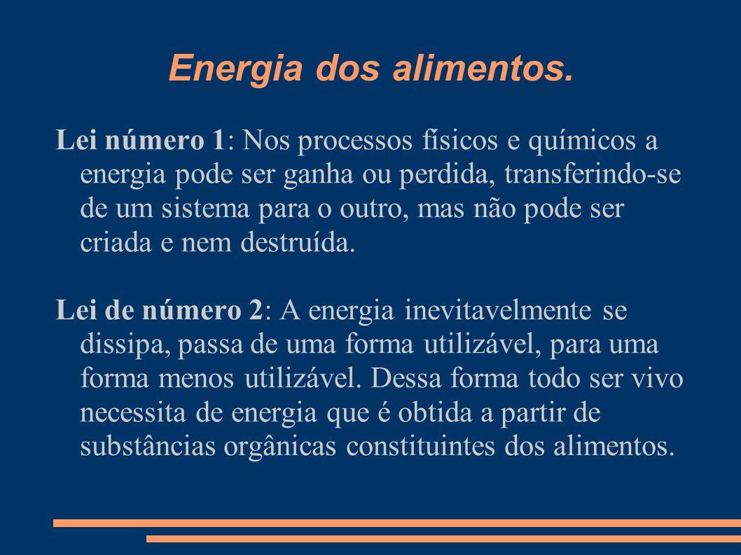Energia dos alimentos. Lei número 1: Nos processos físicos e químicos a energia pode ser ganha ou perdida, transferindo-se de um sistema para o outro,
