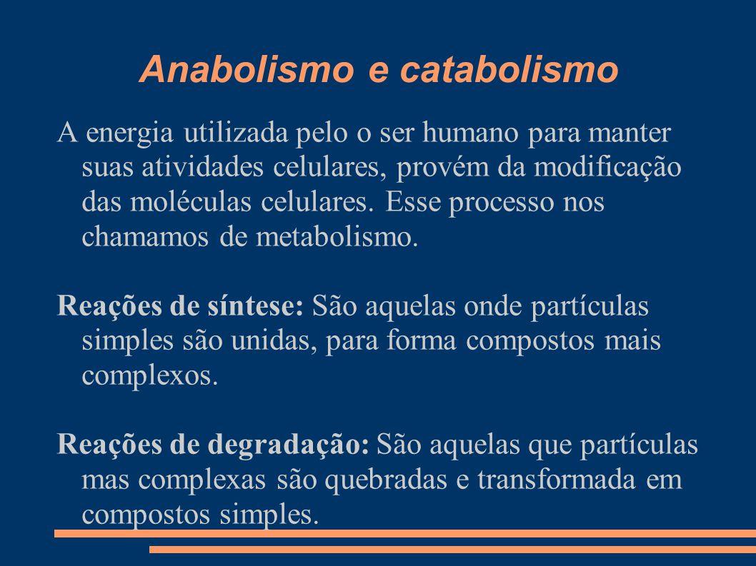 Anabolismo e catabolismo A energia utilizada pelo o ser humano para manter suas atividades celulares, provém da modificação das moléculas celulares. E