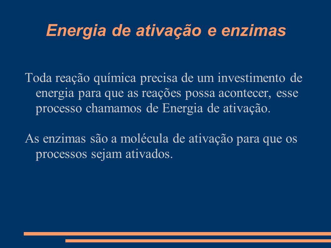 Energia de ativação e enzimas Toda reação química precisa de um investimento de energia para que as reações possa acontecer, esse processo chamamos de