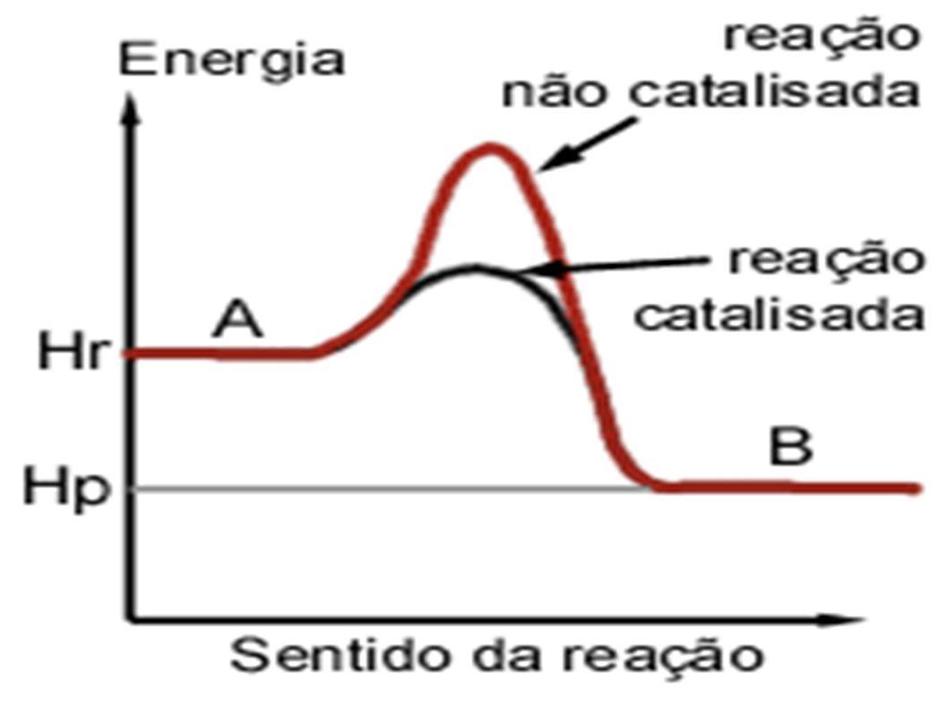 Succinato: O succinil-CoA libera grande quantidade de energia quando perde a CoA, originando succinato.