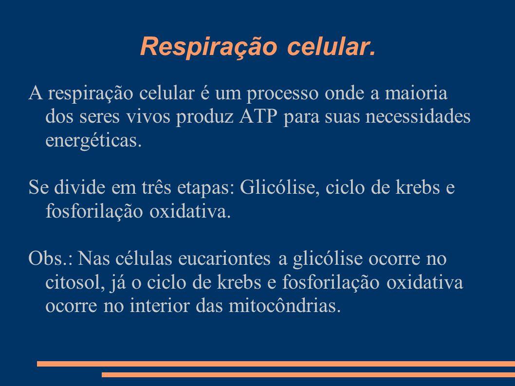 Respiração celular. A respiração celular é um processo onde a maioria dos seres vivos produz ATP para suas necessidades energéticas. Se divide em três